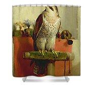 Falcon Shower Curtain by Sir Edwin Landseer