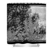 Fall 2015 102 Shower Curtain