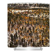 Fall And Winter On The Same Day Shower Curtain