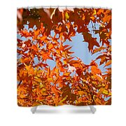 Fall Art Prints Orange Autumn Leaves Baslee Troutman Shower Curtain