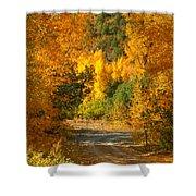 Fall Aspen Trail Shower Curtain