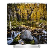 Fall At Mcgee Creek Shower Curtain