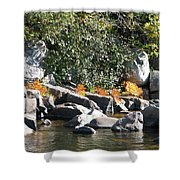 Fall At The Creek Shower Curtain