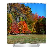 Fall At The Hook Shower Curtain