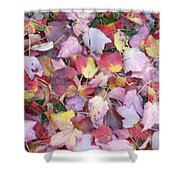Fall Carpet Shower Curtain