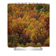 Fall Cluster Shower Curtain