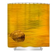Fall Color Abstract Shower Curtain