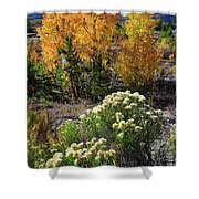 Fall Color Comes To Dillon Reservoir Shower Curtain
