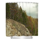 Fall Color Evergreens Shower Curtain