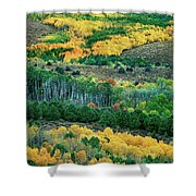 Fall Color In The Eastern Sierras California Shower Curtain