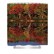 Fall Color Reflected In Thornton Lake Michigan Shower Curtain