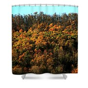 Fall Colors 16 Shower Curtain