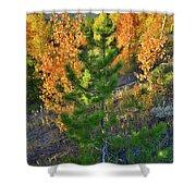 Fall Colors Along Dillon Reservoir Shower Curtain