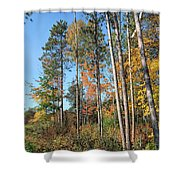 Fall Colors Along The Norway Beach Loop Shower Curtain