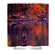 Fall Colors And Geese Shower Curtain