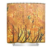 Fall Colors At Cape May Shower Curtain
