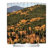 Fall Colors At Rocky Mountain National Park Shower Curtain