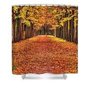 Fall Colors Avenue Shower Curtain