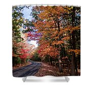Fall Colors Backroad Shower Curtain