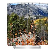 Fall Colors In Rocky Mountain National Park Shower Curtain