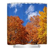 Fall Colors In Spokane Shower Curtain