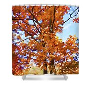 Fall Colors Looking Awesome Shower Curtain