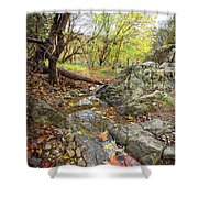 Fall Creek View Shower Curtain