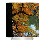 Fall Day At The Lake Shower Curtain