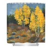 Fall Delight Shower Curtain