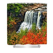 Fall Falls Shower Curtain