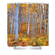 Fall Fiesta Shower Curtain