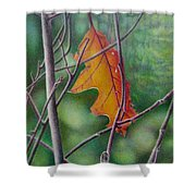 Fall Finale Shower Curtain