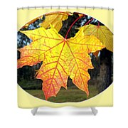 Fall Finery 2 Shower Curtain