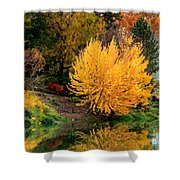Fall Fireworks Shower Curtain