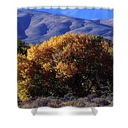 Fall Foliage And Hills, Carson City Shower Curtain