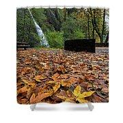 Fall Foliage At Horsetail Falls Shower Curtain