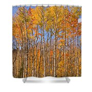 Fall Foliage Color Vertical Image Shower Curtain