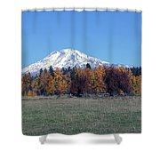 Fall Foliage  Shower Curtain