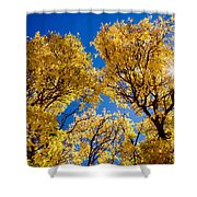 Fall Foliage Near Ruidoso Nm Shower Curtain