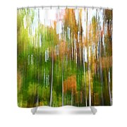 Fall Forest Colors Shower Curtain