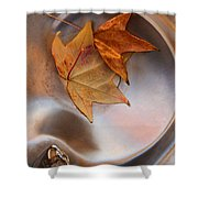 Fall Fountain Shower Curtain