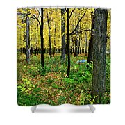 Fall Fusion Shower Curtain