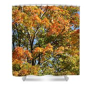 Fall Gradient Shower Curtain