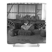 Fall Harvest Display Shower Curtain