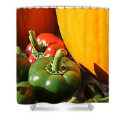 Fall Harvest Shower Curtain