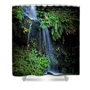Fall In Eden Shower Curtain by Carlos Caetano