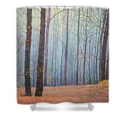Fall In Forest Shower Curtain