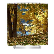 Fall In Kaloya Park 3 Shower Curtain