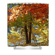 Fall In Kaloya Park 4 Shower Curtain