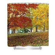 Fall In Kaloya Park 9 Shower Curtain